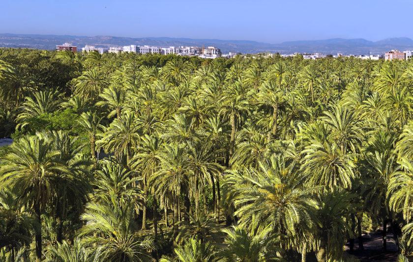 De prejudicis i judicis lingüístics a València
