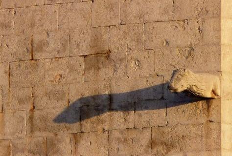 Una gàrgola de l'Església de L'Escala   Foto de Montserrat Caldés