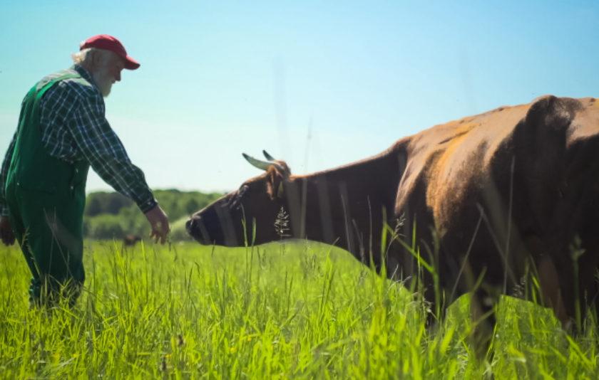 El granger idealista