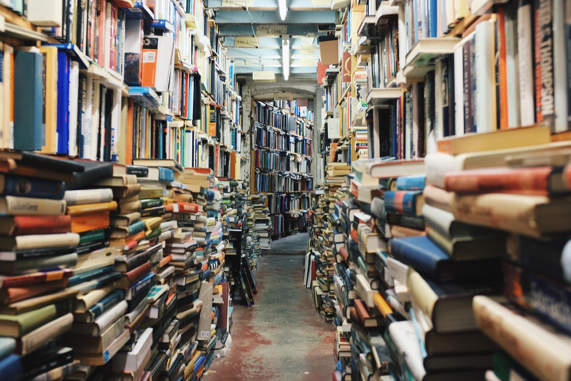 Un magatzem de llibres