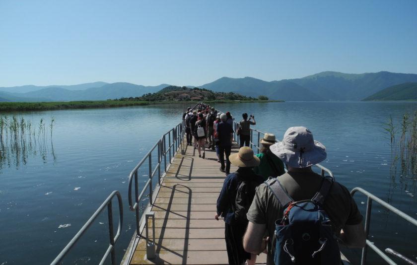 Caminant i pensant junts a Grècia