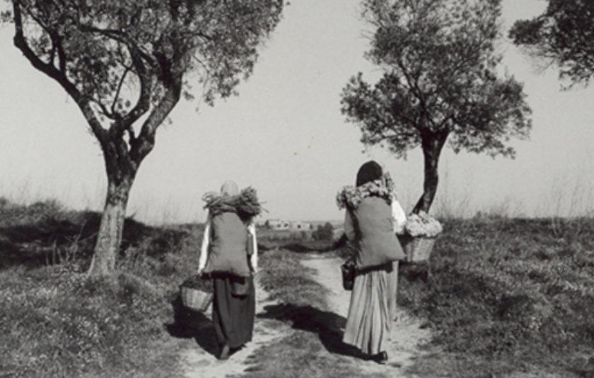 Dones que anaven pel món