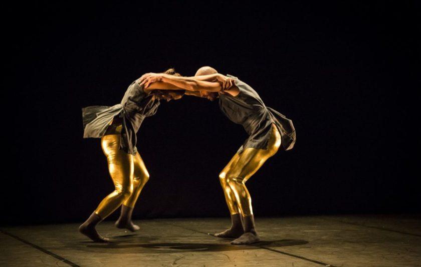 Dansa contemporània, flamenc i danses urbanes al Dansat