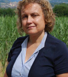 Montserrat Palau i Bargalló